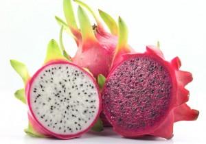 os beneficios da pitaya para o organismo